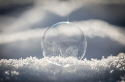 Winter Frost Bubble Frozen Snow  - stefanklaussner / Pixabay